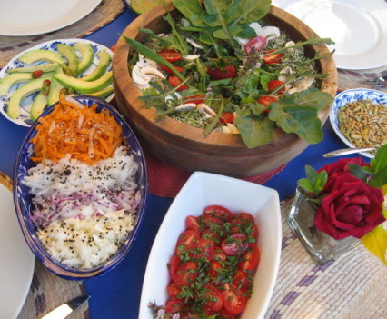 Selection of organic salads